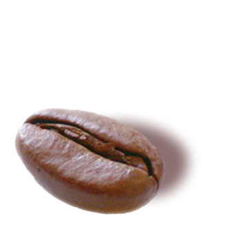 Single Serve Coffee Beans